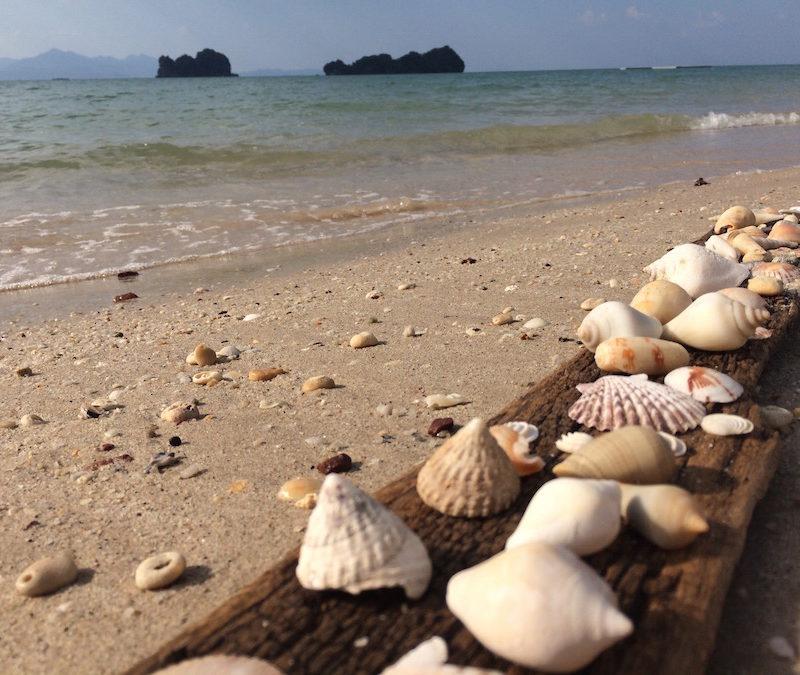 TIPS & ANBEFALINGER TIL MALAYSIA